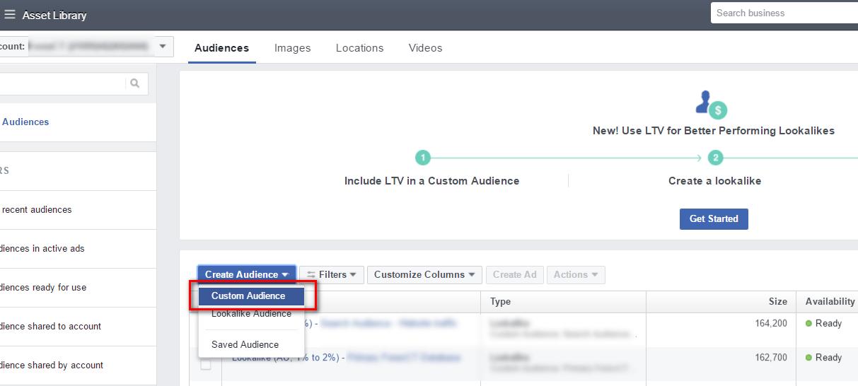 'Create Audience', select 'Custom Audience'.